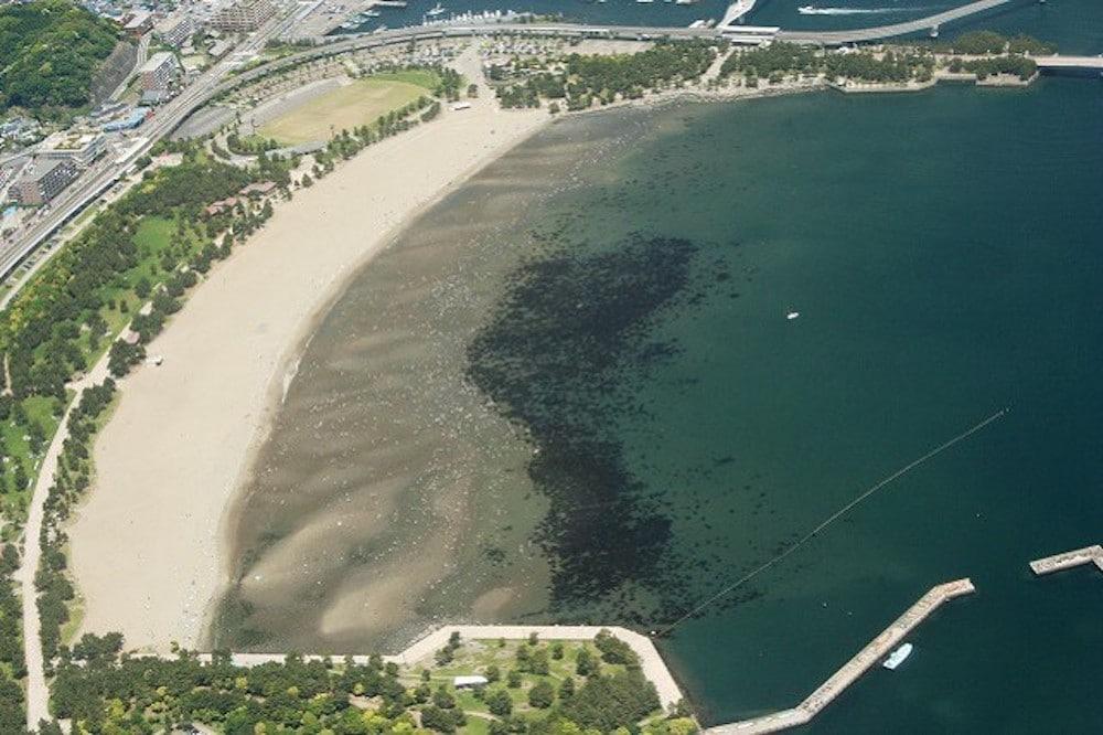 海を守り、地域を潤す。横浜市のサステナブルな循環型事業「横浜ブルーカーボン」