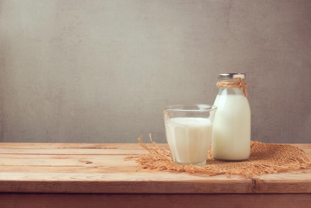 牛乳や貝のタンパク質からつくる生分解性繊維。Werewoolの挑戦