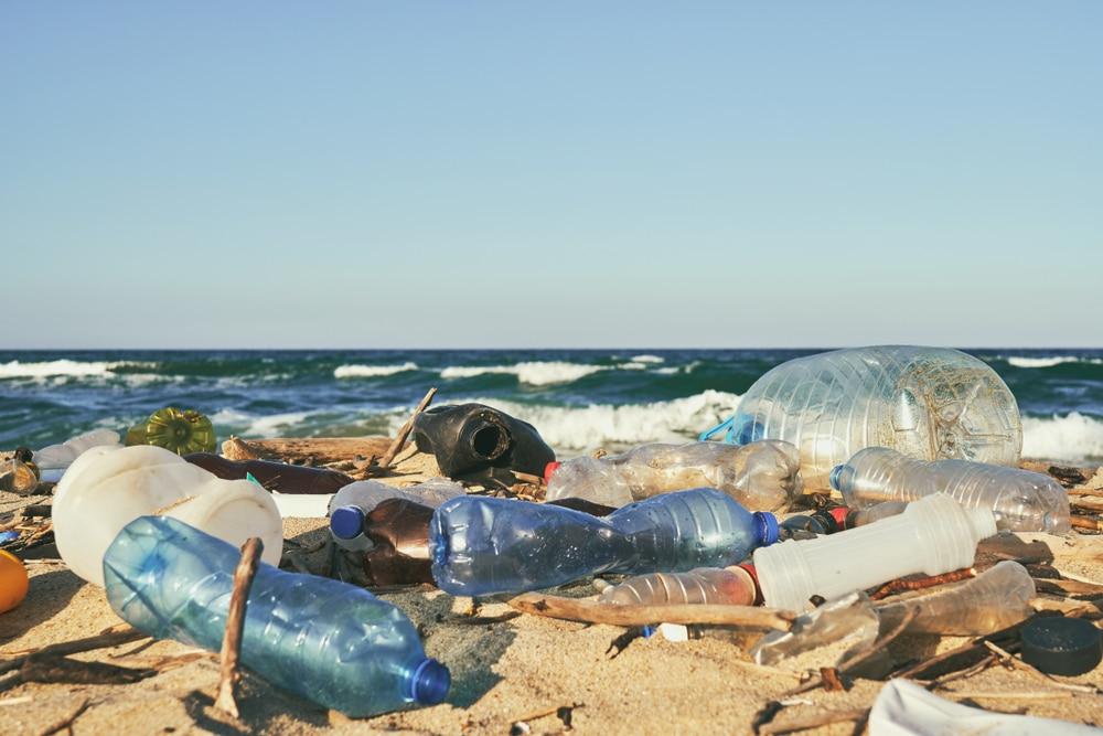 WWFなど3者、プラスチック汚染に関する国連条約制定を呼びかけ
