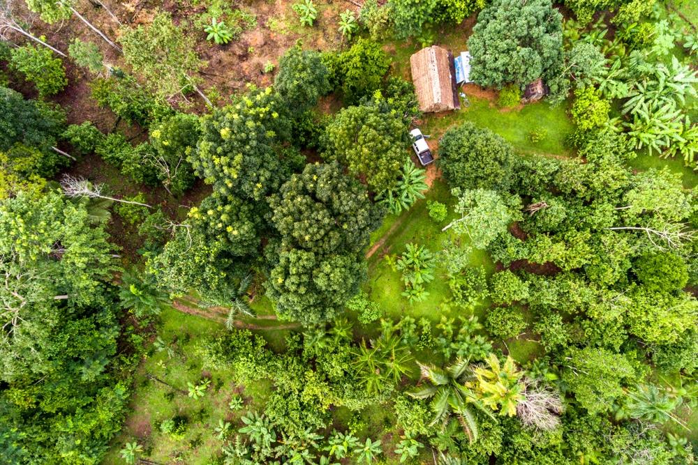 【食料編】コロナ禍からの回復に向けた重点投資ポイント  −環境再生型食料生産への移行と食品廃棄物の回収・再分配・高付加価値化のためのインフラ整備を−