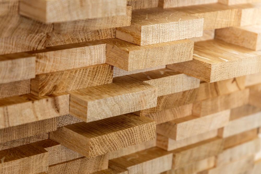 Circle Economyを含む10組織、建設業界の木材利用に関するレポートを発表。2030年に向けたシナリオを提示