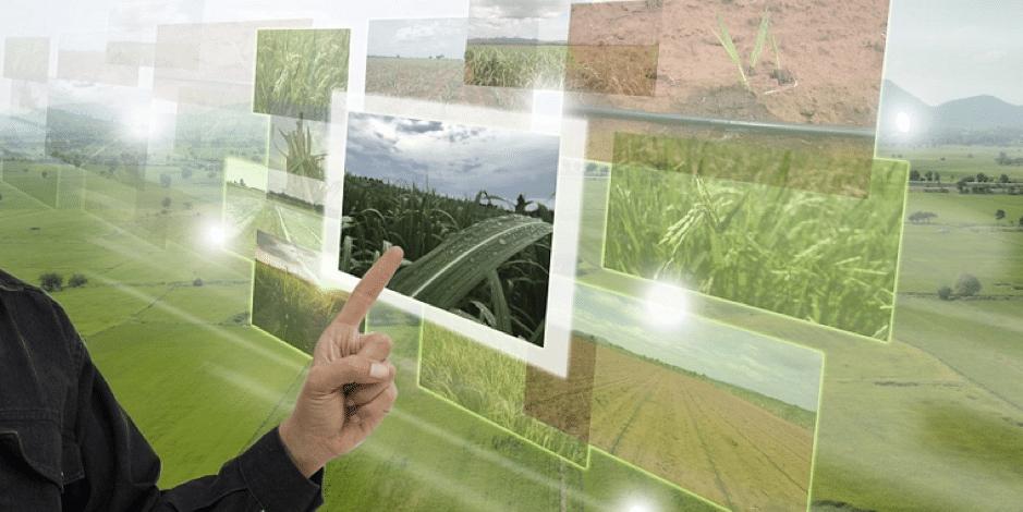 食料システムの先進国アムステルダムを見に、2050年の未来に旅しよう