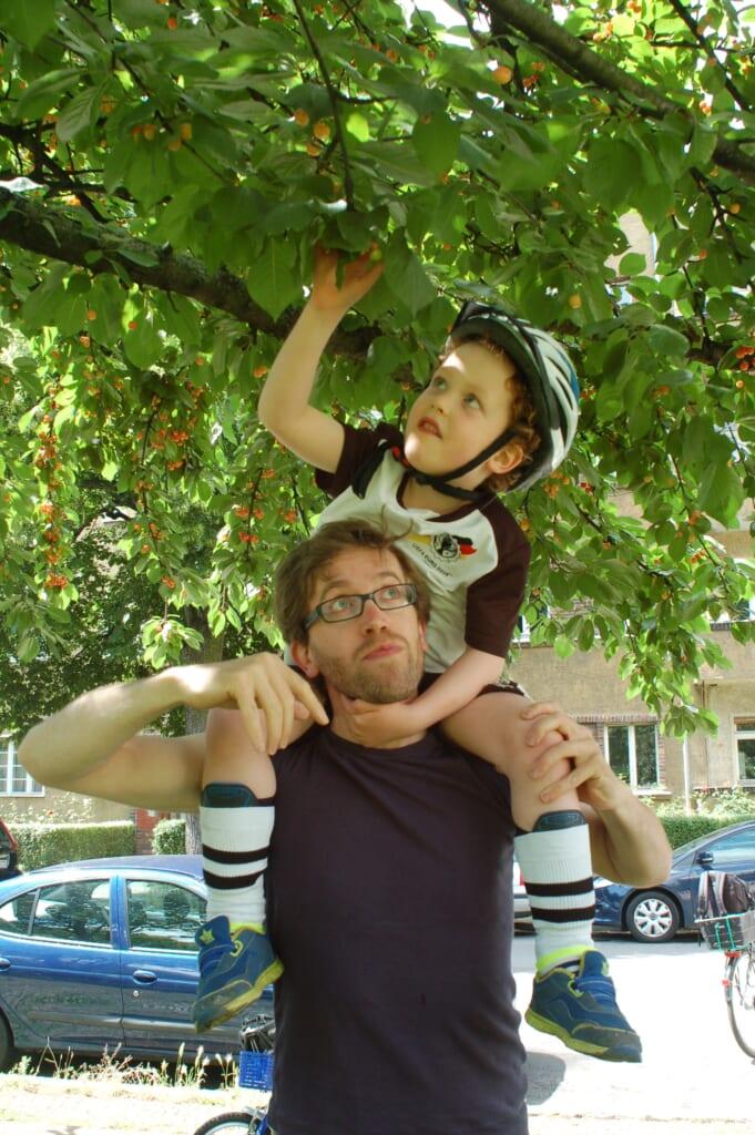 お父さんと息子が果物を収穫している様子