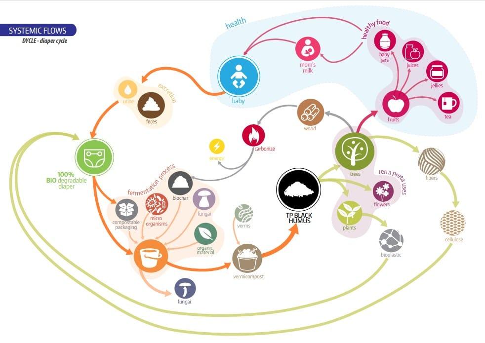 DYCLEのシステミックフローの図