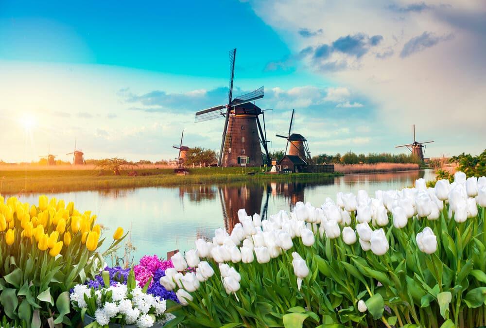 オランダのABN AMRO、サステナブルインパクトファンドをローンチ