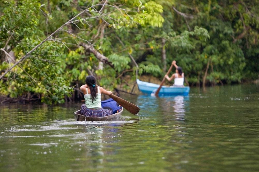 先住民族団体、世界自然保護会議で土地と資源に対する権利と管理の承認を要求
