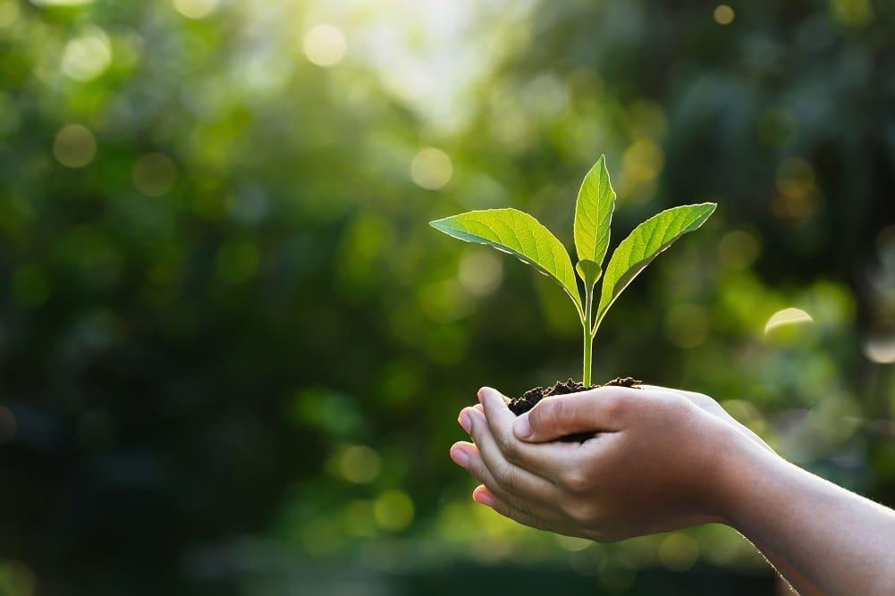 ワコール、2030年までに自社排出量と製品廃棄ゼロ・環境配慮型素材の使用比率50%を目指す